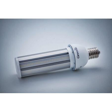 Żarówka LED Greenie Partenon 60W z matowymi przesłonami, gwarancja 5 lat