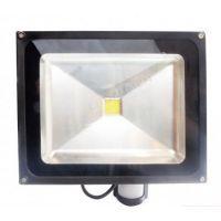 naświetlacz HL-18P/50W LED IP65 CCD PIR CW