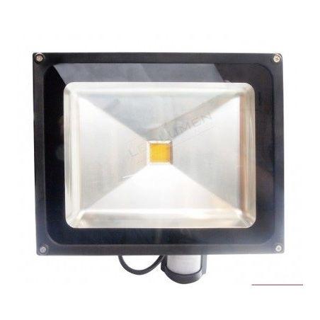 naświetlacz HL-18P/50W LED IP65 CCD PIR WW