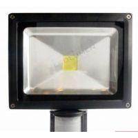 naświetlacz HL-16P/20W LED IP65 CCD PIR CW