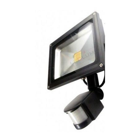 naświetlacz HL-16P/20W LED IP65 CCD PIR WW