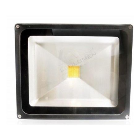 naświetlacz HL-17/30W LED IP65 CCD WW