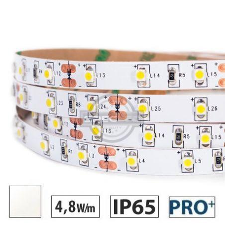Taśma LED  PRO+ 4,8W/m, 60xLED SMD 3528/m, IP65, biały neutralny, 5m