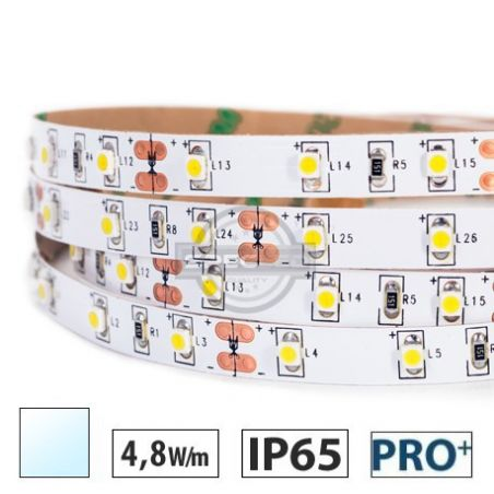 Taśma LED  PRO+ 4,8W/m, 60xLED SMD 3528/m, IP65, biały zimny, 5m