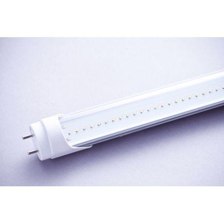 Świetlówka LED 30W T8-1500mm przezroczysta