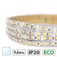 Taśma LED ECO 9,6W/m, 120xLED SMD 3528/m, IP20, biały zimny, 5m