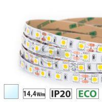 Taśma LED ECO 14,4W/m, 60xLED SMD 5050/m, biały zimny, IP20, 5m
