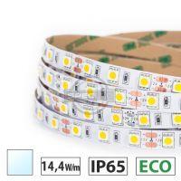 Taśma LED ECO 14,4W/m, 60xLED SMD 5050/m, biały zimny, IP65, 5m