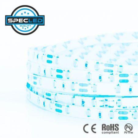 Taśma LED PRO 19,2W/m, 1200lm/m, 6000K, 24VDC, IP20, 5m