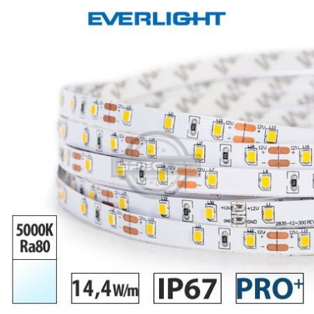 Taśma LED  PRO+ EVERLIGHT 14,4W/m, 1100 lm/m, 5000K, Ra80, 12V DC, IP67,5m