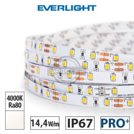 Taśma LED  PRO+ EVERLIGHT 14,4W/m, 1100 lm/m, 4000K, Ra80, 12V DC, IP67, 5m