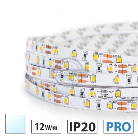 Taśma LED  PRO 12W/m, 60xLED SMD 2835/m, IP20, biały zimny, 5m