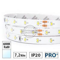 Taśma LED PRO+ 7,2W/m, 800lm/m, 6000K, Ra80, 24VDC, IP20, 5m