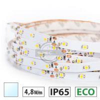 Taśma LED ECO 4,8W/m, 60xLED SMD 3528/m, IP65, biały zimny, 5m
