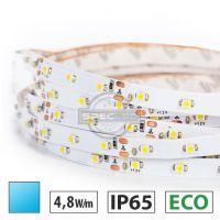 Taśma LED ECO 4,8W/m, 60xLED SMD 3528/m, IP65, niebieski, 5m