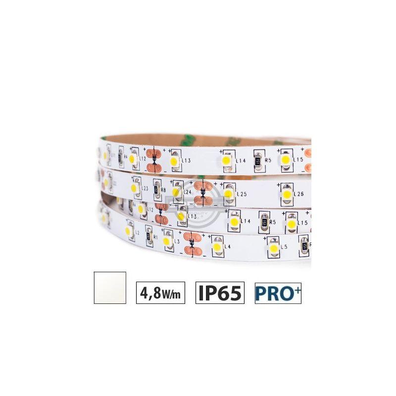 Taśma LED  PRO 4,8W/m, 60xLED SMD 3528/m, IP65, biały neutralny, 5m