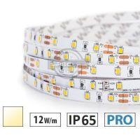 Taśma LED PRO 12W/m, 120xLED SMD 2835/m, IP65, biały ciepły, 1m