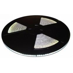 Taśma LED PRO 12W/m, 120xLED SMD 2835/m, IP65, biały zimny, 25m